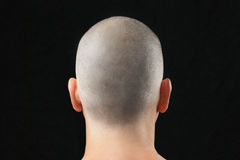Cabeza afeitada budista, de detrás Fotografía de archivo libre de regalías