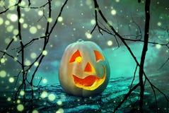 Cabeza asustadiza de la linterna del enchufe de la calabaza de Halloween en un bosque de niebla místico en la noche fantasmagóric Foto de archivo libre de regalías