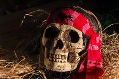 Cabeza asustadiza del cráneo Imágenes de archivo libres de regalías