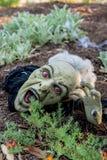 Cabeza asustadiza en la tierra, diversión del zombi de Halloween Foto de archivo
