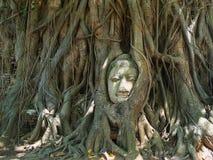 Cabeza de Buda Foto de archivo libre de regalías