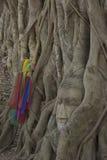 Cabeza de Buda Foto de archivo