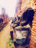 ¿Cabeza de Buda??? Imagen de archivo libre de regalías