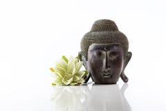 Cabeza de Buda en un fondo y un loto blancos Imagen de archivo