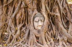 Cabeza de Buda Tailandia Fotografía de archivo libre de regalías