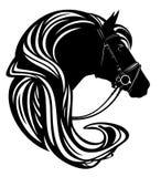 Cabeza de caballo con el arnés y el vecto largo de la melena Fotografía de archivo libre de regalías
