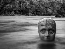 Cabeza de cerámica de la frenología tradicional que emerge de superficie del río imagenes de archivo