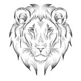 Cabeza de dibujo étnica de la mano del león diseño del tótem/del tatuaje Uso para la impresión, carteles, camisetas Ilustración d Imagenes de archivo