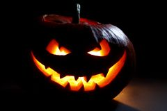 Cabeza de la calabaza de Halloween Fotos de archivo