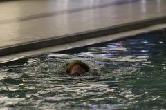 Cabeza de la muchacha pelirroja que salpica como ella salta en poo que nada Imagen de archivo libre de regalías
