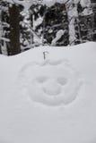 Cabeza de la nieve Imágenes de archivo libres de regalías