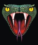 Cabeza de la serpiente Foto de archivo