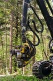 Cabeza de la tala de la máquina segador del bosque fotografía de archivo