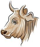 Cabeza de la vaca ilustración del vector