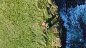 Cabeza de lazo en el condado Clare en Irlanda - cantidad aérea del abejón metrajes
