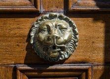 Cabeza de leones Imagen de archivo libre de regalías