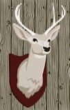 Cabeza de los ciervos Imagen de archivo