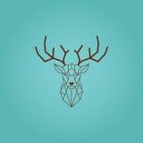 Cabeza de los ciervos y diseño poligonal de los cuernos Vector del color de Brown con el fondo de la pendiente del turquaze Fotos de archivo libres de regalías