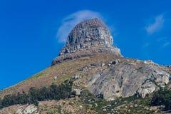 Cabeza de los leones, Ciudad del Cabo Fotos de archivo libres de regalías