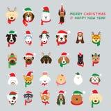 Cabeza de los perros que llevan el traje de la Navidad foto de archivo