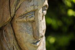 Cabeza de madera en un jardín Imagen de archivo