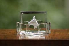 Cabeza de perro antigua que graba al agua fuerte el vidrio imagen de archivo libre de regalías