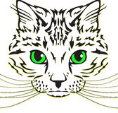 Cabeza de un gato con las barbas largas Fotos de archivo libres de regalías