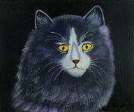 Cabeza de un gato púrpura negro con los ojos amarillos fotografía de archivo libre de regalías