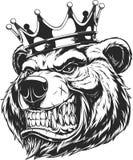 Cabeza de un oso feroz ilustración del vector
