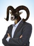 Cabeza de una cabra en un cuerpo del ` s del hombre Imagen de archivo libre de regalías