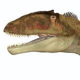 Cabeza del Carcharodontosaurus ilustración del vector