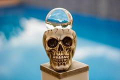 Cabeza del cráneo y una bola de vidrio de la fotografía imagenes de archivo