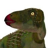 Cabeza del dinosaurio de Scutellosaurus fotografía de archivo libre de regalías