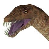 Cabeza del dinosaurio de Tanystropheus Imágenes de archivo libres de regalías