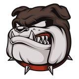 Cabeza del dogo enojado Imagen de archivo libre de regalías