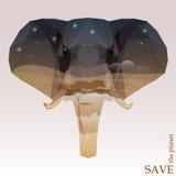 Cabeza del elefante con la opinión de la sabana de la noche ejemplo del concepto en el tema de la protección de la naturaleza y d Fotografía de archivo