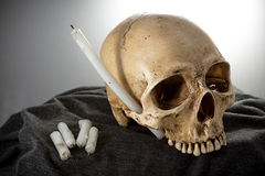 Cabeza del esqueleto de Halloween Imagen de archivo libre de regalías