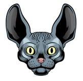 Cabeza del gato de la esfinge stock de ilustración