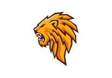 Cabeza del león Fotografía de archivo libre de regalías