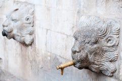 Cabeza del león de la fuente Fotos de archivo