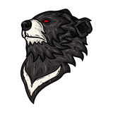 Cabeza del oso negro aislada en el fondo blanco Imagen de archivo libre de regalías