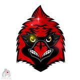 Cabeza del pájaro aislada en blanco Logotipo para cualquier cardenales del equipo de deporte aislados stock de ilustración