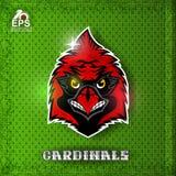 Cabeza del pájaro en el escudo rojo Logotipo para cualquier cardenales del equipo de deporte ilustración del vector