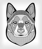 Cabeza del perro del Malamute, dibujo blanco y negro en fondo gris cabeza simétrica con la trama y modelos Para el uso como TA Fotos de archivo