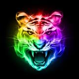 Cabeza del tigre en fuego colorido. Fotografía de archivo