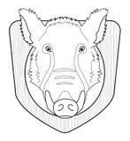 Cabeza del verraco en el escudo de madera contorno Foto de archivo libre de regalías