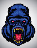 Cabeza enojada del gorila Fotografía de archivo
