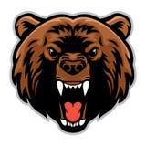 Cabeza enojada del oso Fotos de archivo libres de regalías