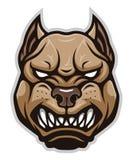 Cabeza enojada del pitbull del perro libre illustration