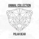 Cabeza geométrica del oso polar stock de ilustración